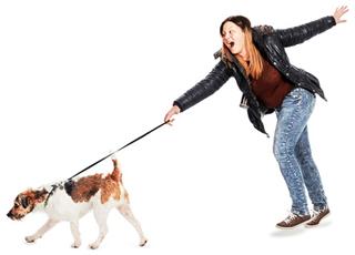Hund macht Probleme